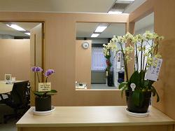 事務所風景2